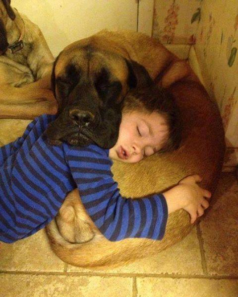 The Mutual Pillow