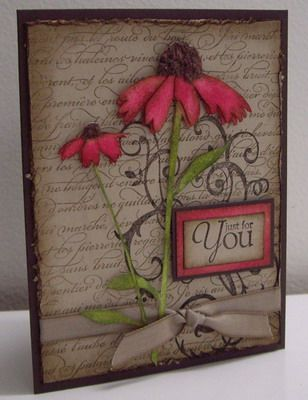 Stamping with Loll: Coneflowers and Pine Branches cards