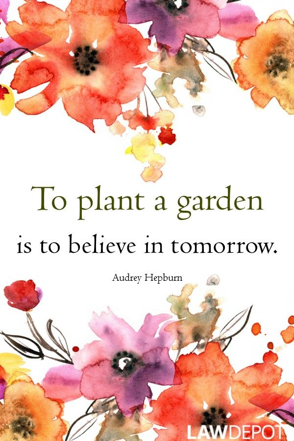 183 Best Motivational Quotes Images On Pinterest Inspire Quotes Motivation Quotes And