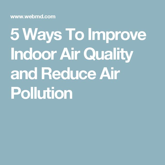 Best 25 indoor air quality ideas on pinterest air for Best plants to improve air quality