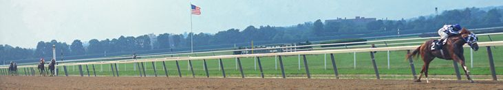 This picture says it all. Secretariat raced into the ever glow of immortality in the 1973 Belmont Stakes. His victory, by one of the widest margins in the history of the American turf – 31 lengths ahead of his nearest challenger and in a world record time for the 1 1/2 miles distance – 2 minutes 24, remains one of the most memorable in sports history.  http://www.secretariat.com/past-performances/belmont/