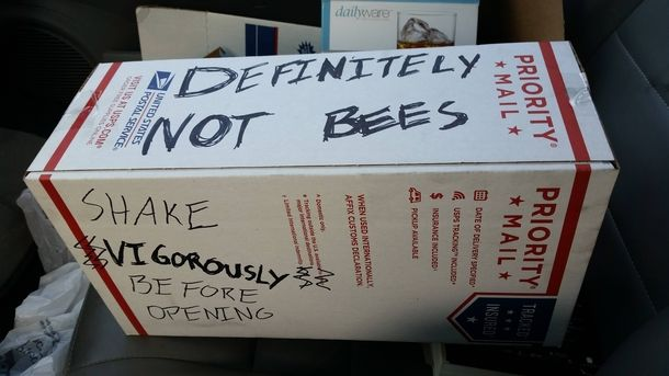 """This feels like some product that Nightvale would advertise  """"Definitely Not Bees"""" order today and we won't send you bees. Promise. I mean why would we even send you bees. Exactly. We wouldn't."""