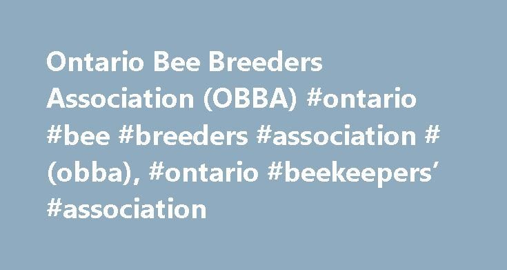 Ontario Bee Breeders Association (OBBA) #ontario #bee #breeders #association #(obba), #ontario #beekeepers' #association http://tulsa.nef2.com/ontario-bee-breeders-association-obba-ontario-bee-breeders-association-obba-ontario-beekeepers-association/  # Ontario Bee Breeders Association (OBBA) The Ontario Bee Breeders' Association (OBBA) is a program within the Ontario Beekeepers' Association (OBA) Mandate The mandate of the Ontario Bee Breeders' Association (OBBA) is to encourage and support…