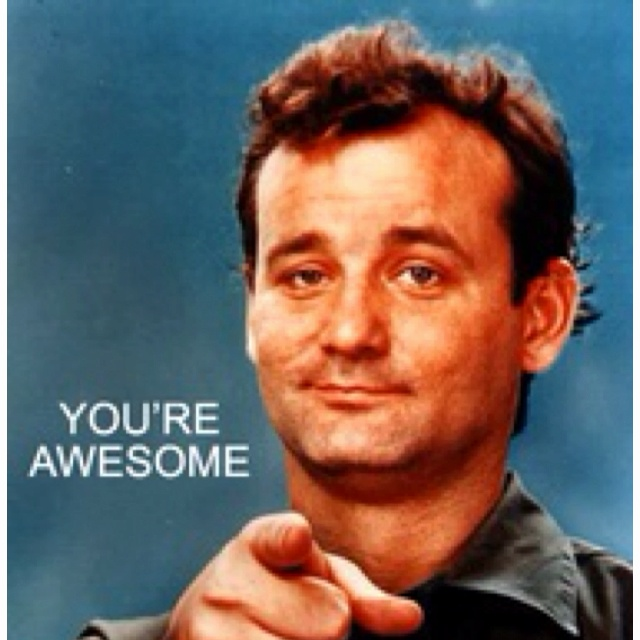 Youre Awesome Meme Bill Murray