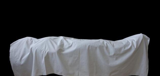 لماذا لا يغسل الشهيد ولا يكفن خص الله عز وجل للشهداء أحكام معينة لا يجوز أحد يختص بها غير الشهيد ويكون حديثنا هنا عن الشهداء Bed Pillows Pillow Cases Pillows