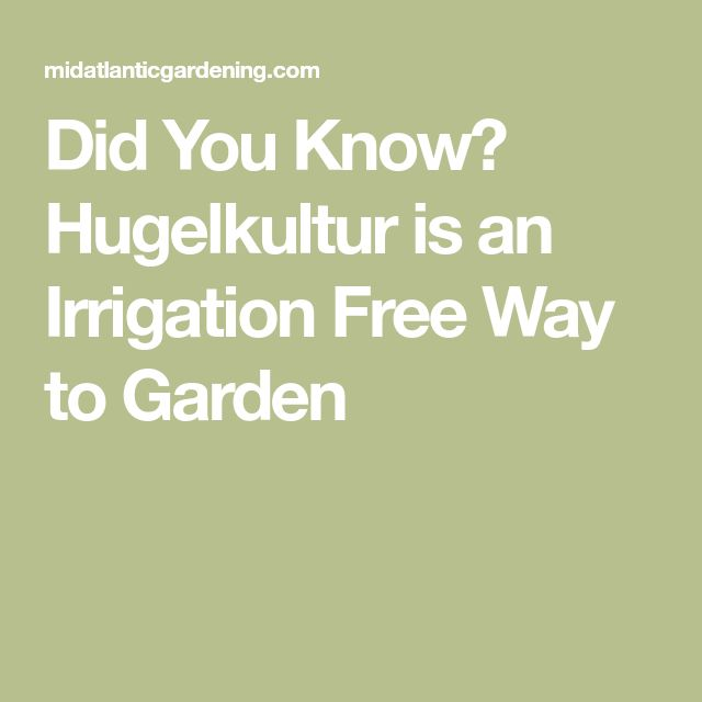 Did You Know? Hugelkultur is an Irrigation Free Way to Garden