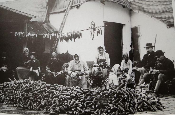 Hódmezővásárhely 1900 körül