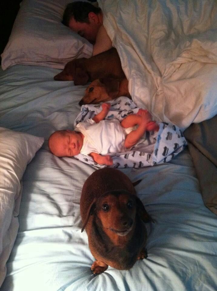 i'm still the baby,right? Omg looks like the potential for our bed one day! Didn't get a king size for nothing!