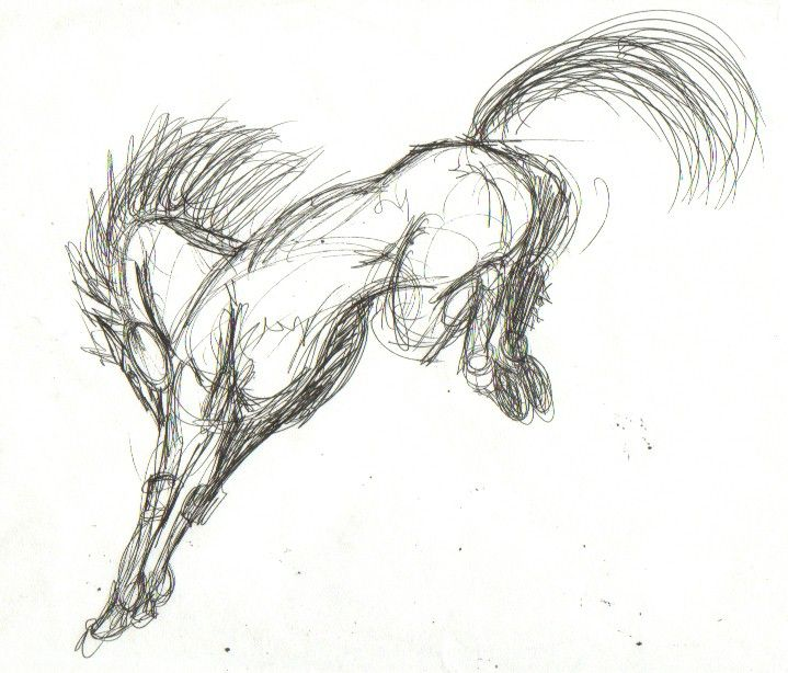 jump down horse sketch google search