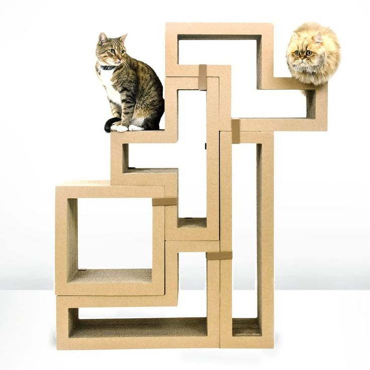661 best images about best of cool cat tree plans on for Interesting cat trees