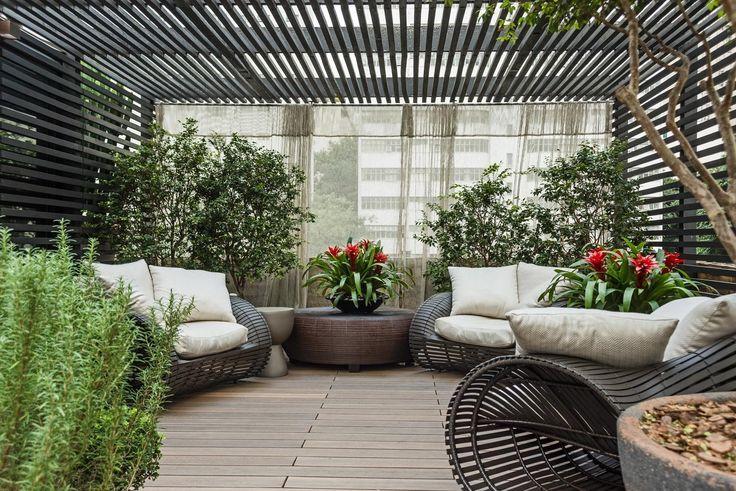 Pergolados criam sombra e deixam o jardim e, até, áreas internas mais bonitas