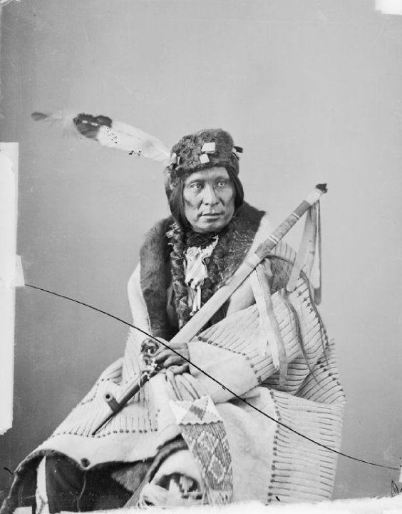 MAD BEAR , 1872