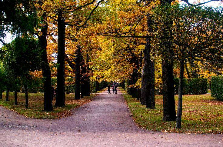 Catherine Park - null