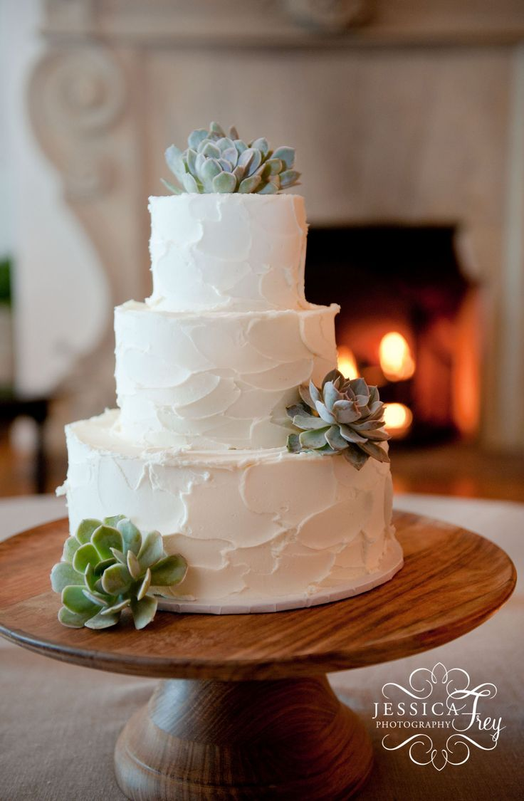 25 best ideas about succulent wedding cakes on pinterest green big wedding cakes m s wedding. Black Bedroom Furniture Sets. Home Design Ideas