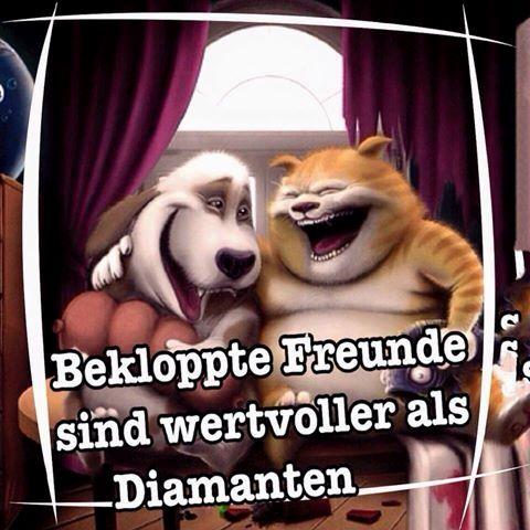 geil #schwarzerhumor #fail #sprüchen #sprüchezumnachdenken #lachen #lustig #lol