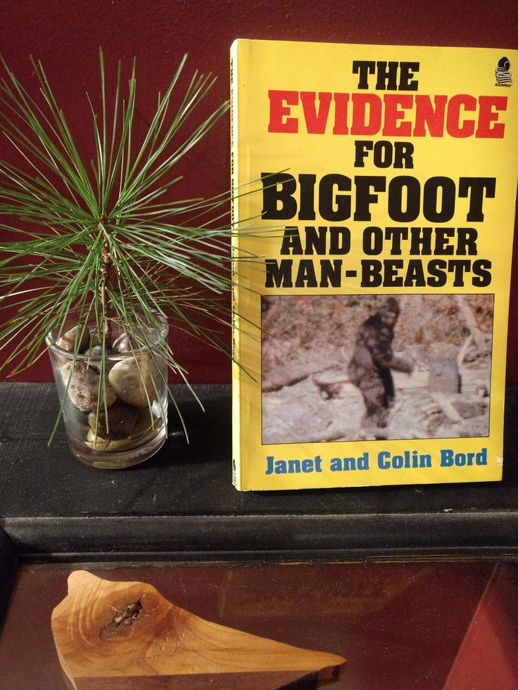 Bigfoot and #UFO sightings within hours? Coincidence? Bigfoot Behavior  #TheDancingYeti #etsyshop: Evidence for #Bigfoot and Other Man-Beasts - Illustrated #SasquatchPhotos #BigfootBook #Yeti Abominable Snowman  http://etsy.me/2nV9cru