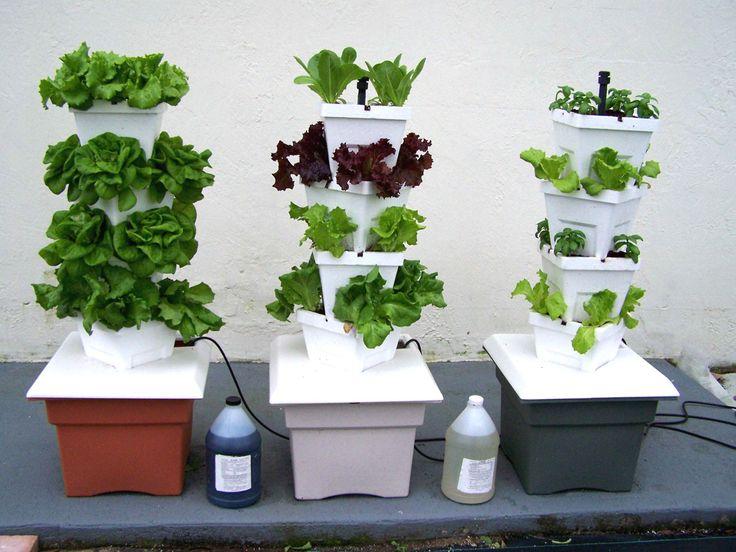Le Jardin Vertical Hydroponique VG1, un veritable jardin potager qui tient sur un balcon, terrasse, veranda