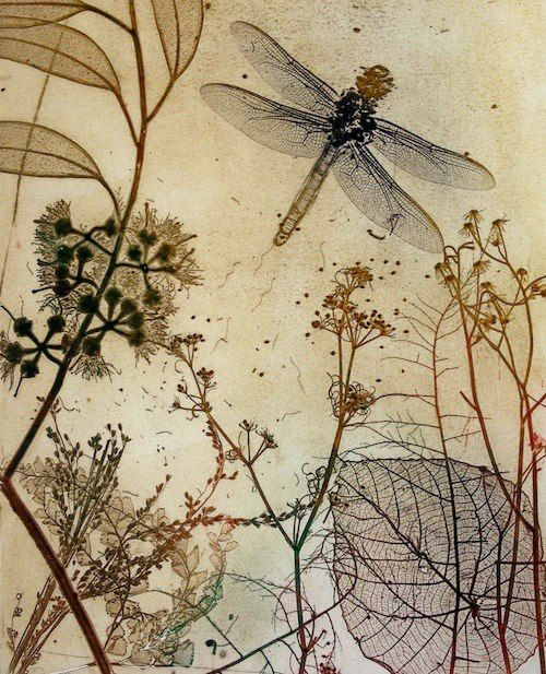 Dragonfly art - Etching by Jet James