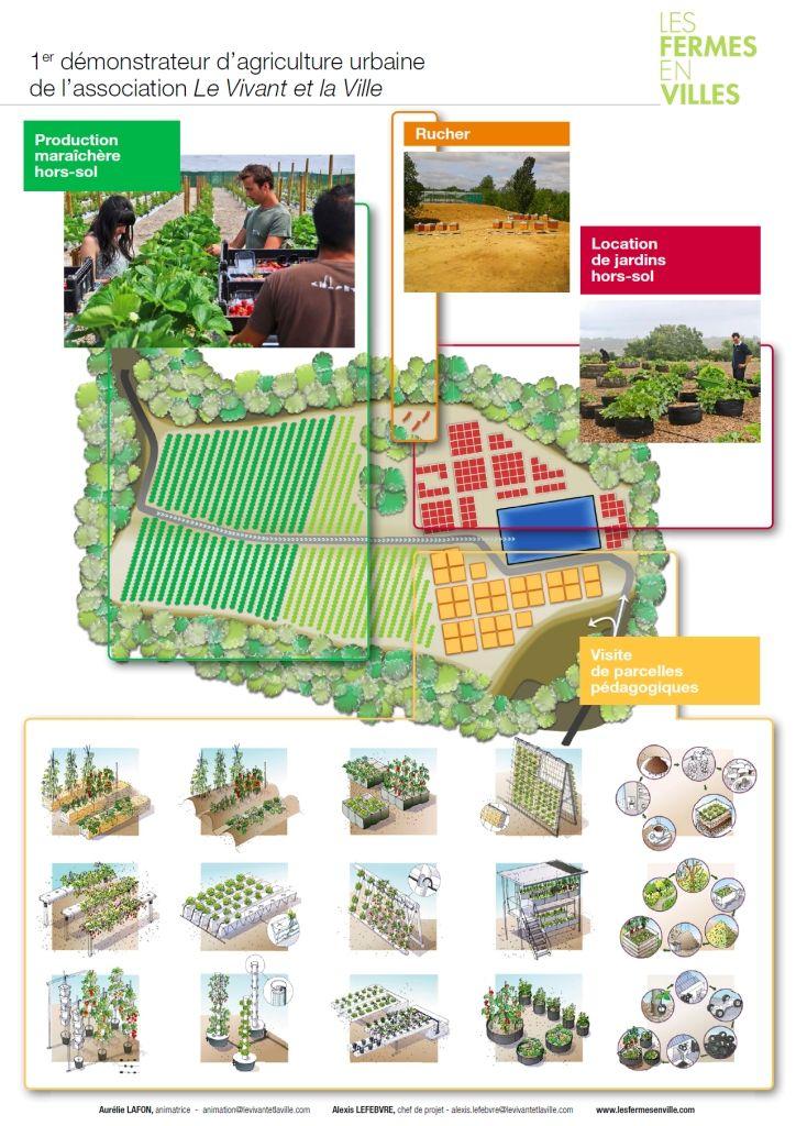 Saint-Cyr : l'Ecole se lance dans l'agriculture urbaine
