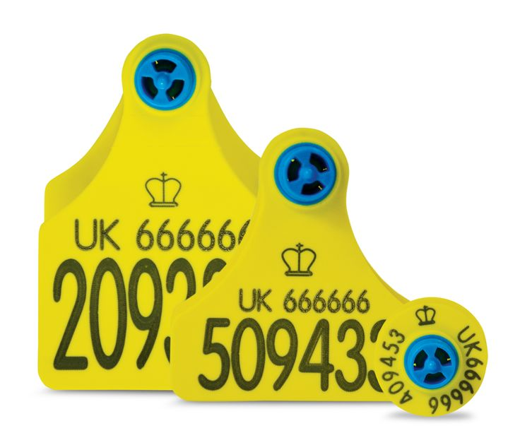 The NEW Blue Helix Range, exclusively from Ritchey Ltd through trade merchants  #cattle #tags #BlueHelix #CattleTags