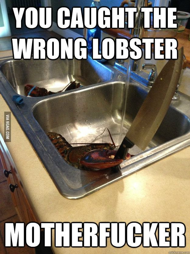 You caught the wrong lobster... Hahaha