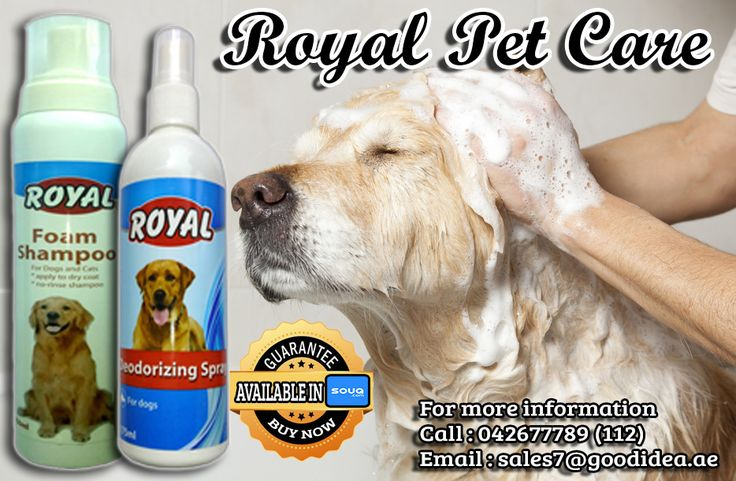 Good grooming is about more than just having a pretty pet. You're also tackling potential health conditions.  Royal Foam Shampoo and Royal Deodorizing Spray for your furr buddy :) For affordable prices :) For more information: Call:042677789 loc 112 Email:sales7@goodidea.ae ◘ We are open for those who have petshops,pet store and Good samaritans helping those stray with promotional offer ♥ Also Available in : SOUQ.COM