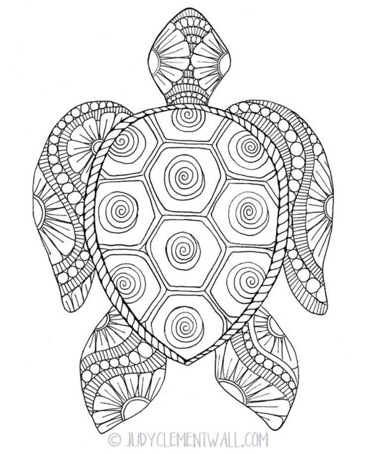 Black And White Cute Turtle Turtle Coloring Pages Cute Turtles Coloring Pages