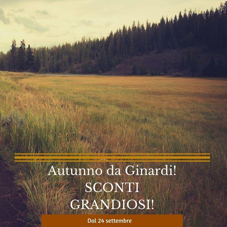Autunno da Ginardi! #sconti grandiosi su #letti #armadi #divani #lampade e #cucine...Fall from Ginardi! Great #discounts on #beds #wardrobes #sofas #lamps and #kitchens... #cattelanitalia #flexform #pedrali #wallanddeco #oggioni #arketipo #milanobedding #gervasoni1882 #morelato #cesarcucine #copat #falegnameria1946 #alfdafre #presottoitalia #horm #fiemme3000 #extendo #riva1920 #desalto #novamobili