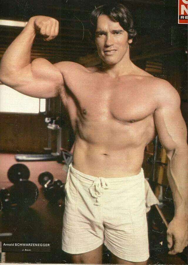 Pin by Joe Paul on Arnold Schwarzenegger bodybuilding