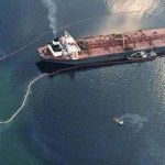 oil spill absorbent, oil spill cleanup, kenaf absorbent, industrial hemp, industrial hemp products,