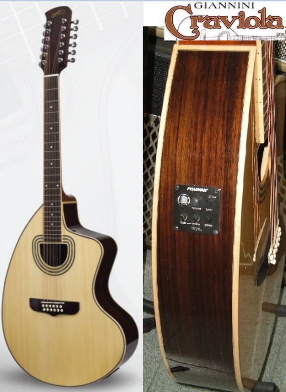 I have just decided that my very next piece must be an electric twelve-string Giannini Craviola. I'll be ordering one any minute now :D