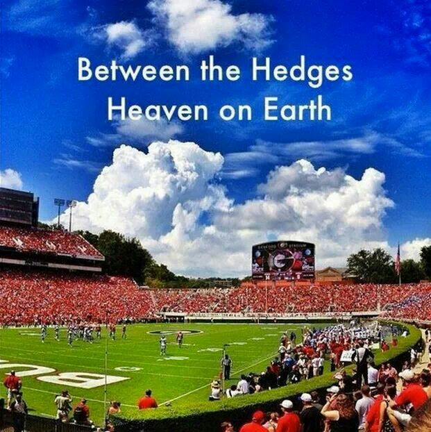 Between the hedges ~ Check this out too ~ RollTideWarEagle.com sports stories that inform and entertain and Train Deck to learn the rules of the game you love. #Collegefootball Let us know what you think. #UGA