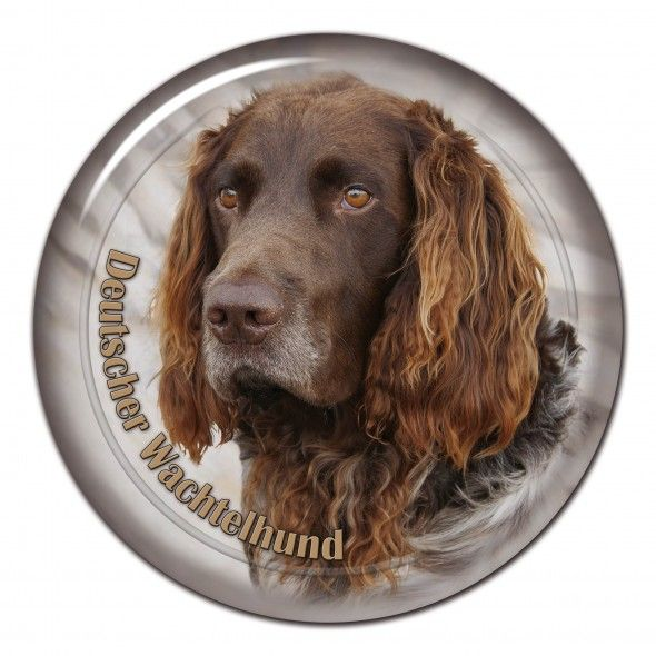 Deutscher Wachtelhund 3D sticker - #wachtelhund #deutscherwachtelhund