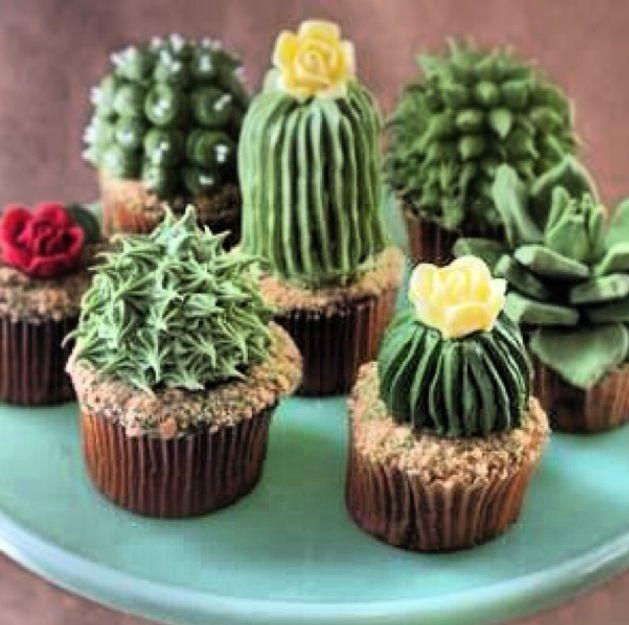 www.facebook.com/cakecoachonline - sharing...Succulent cakes