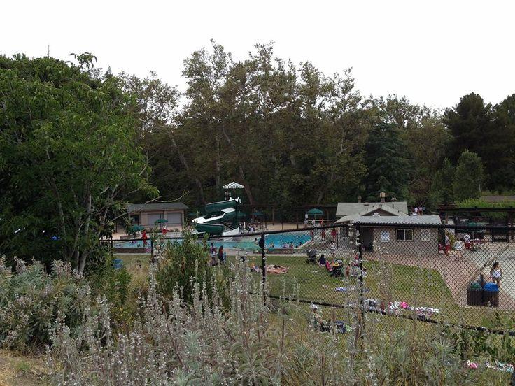 Blackberry farm pool cupertino ca santa clara valley - Blackberry farm cupertino swimming pool ...