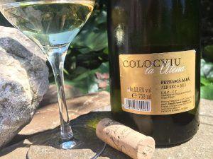 Poziționată în gama premium Colocviu, a producătorului moldav Casa de Vinuri…