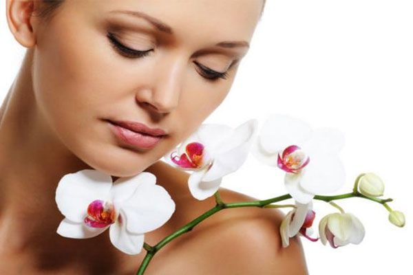 Flowers Smell Decreases The Stress