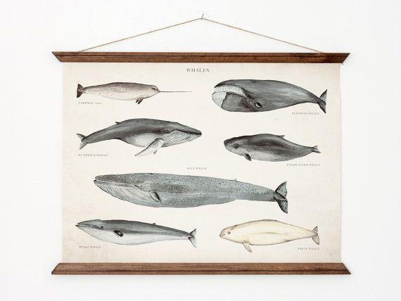 Hey, j'ai trouvé ce super article sur Etsy, chez https://www.etsy.com/fr/listing/88861670/affiche-a3-toile-de-baleines-la-main