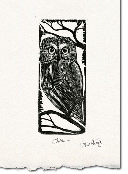 'Owl' by John Steins