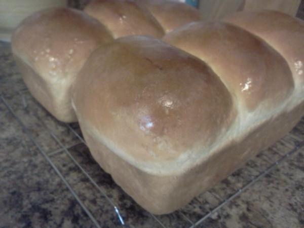 Newfoundland White Bread