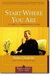 A beautiful guide to meditation practice from the inimitable Pema Chodron.