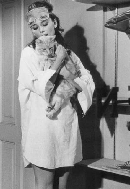 "Audrey Hepburn & ""Cat"" I want a nightgown like the one she has on this movie!"