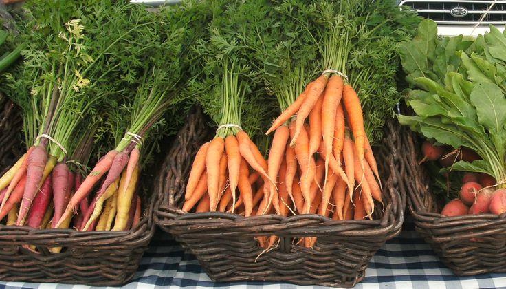 garden fresh carrots at wychwood barns