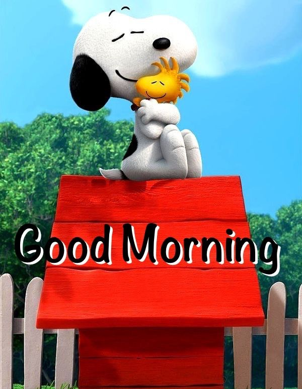 Good Morning!!! Have an Incredibly Wonderful Day!!! O/