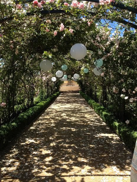 Lanterns in the Rose Arbour