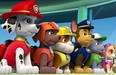 paw patrol piratenschat