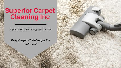 Carpet Steam Cleaning in Puyallup, WA Upholstery Cleaning in Puyallup, WA Air Duct Cleaning in Puyallup, WA Tile and Grout Cleaning in Puyallup, WA Pet Stain and Odor Removal in Puyallup, WA Carpet Stretching and Repair in Puyallup, WA House Cleaning Move in/out in Puyallup, WA Roof and Gutter Cleaning in Puyallup, WA Pressure Washing in Puyallup, WA Free Estimate Cleaning in Puyallup, WA Emergency Service 24/7 Water Extraction in Puyallup, WA Organic Carpet Cleaning in Puyallup, WA