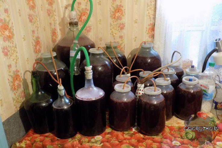 Домашнее вино из варенья – простой и быстрый рецепт без дрожжей, с перчаткой. Какое варенье использовать –  клубничное, малиновое, яблочное, смородиновое...