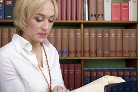 Legal Support Services:Paralegal Services
