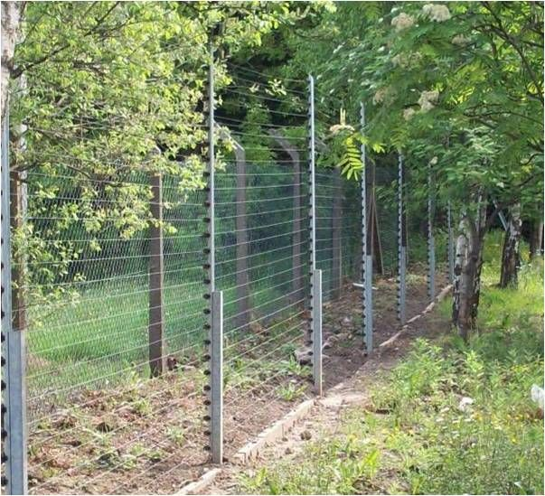 Best 25 Electric Fencing Ideas On Pinterest Pasture